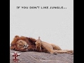 Download King Of The Jungle (Ragga & Jungle _DnB_mix) MP3 song and Music Video