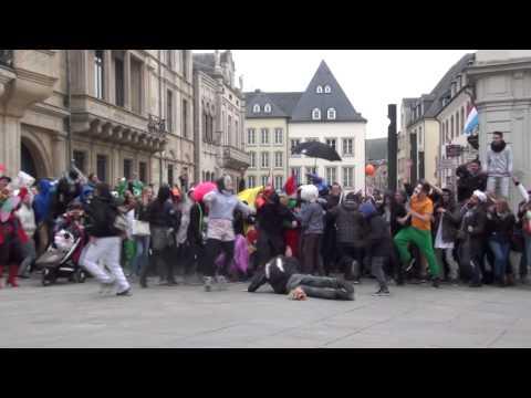 Harlem Shake - Palais du Luxembourg