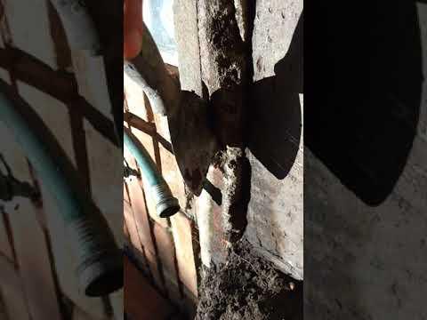 Basement waterproofing Southfield