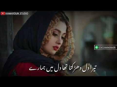 pakistani-whatsapp-status---urdu-lyrics---mere-pass-tum-hon-ost-status---new-sad-drama-ost-status