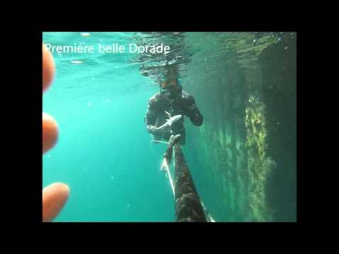 Spearfishing Tunisia / Bizerte 2015