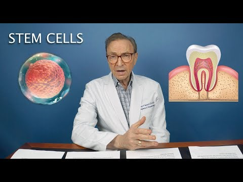 The Future of Stem Cells | Types, Applications, Grow Human Teeth!