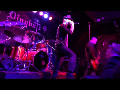 Shelter - Live at Dingbatz 12/19/14
