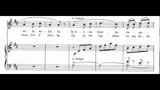 Si, Mi Chiamano Mimi (La Boheme - G. Puccini) Score Animation