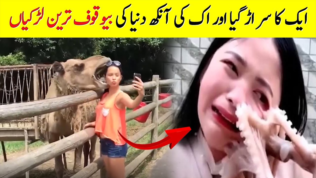 Stupidest People Ever Caught On Camera | دنیا کے بیوقوف ترین لوگ