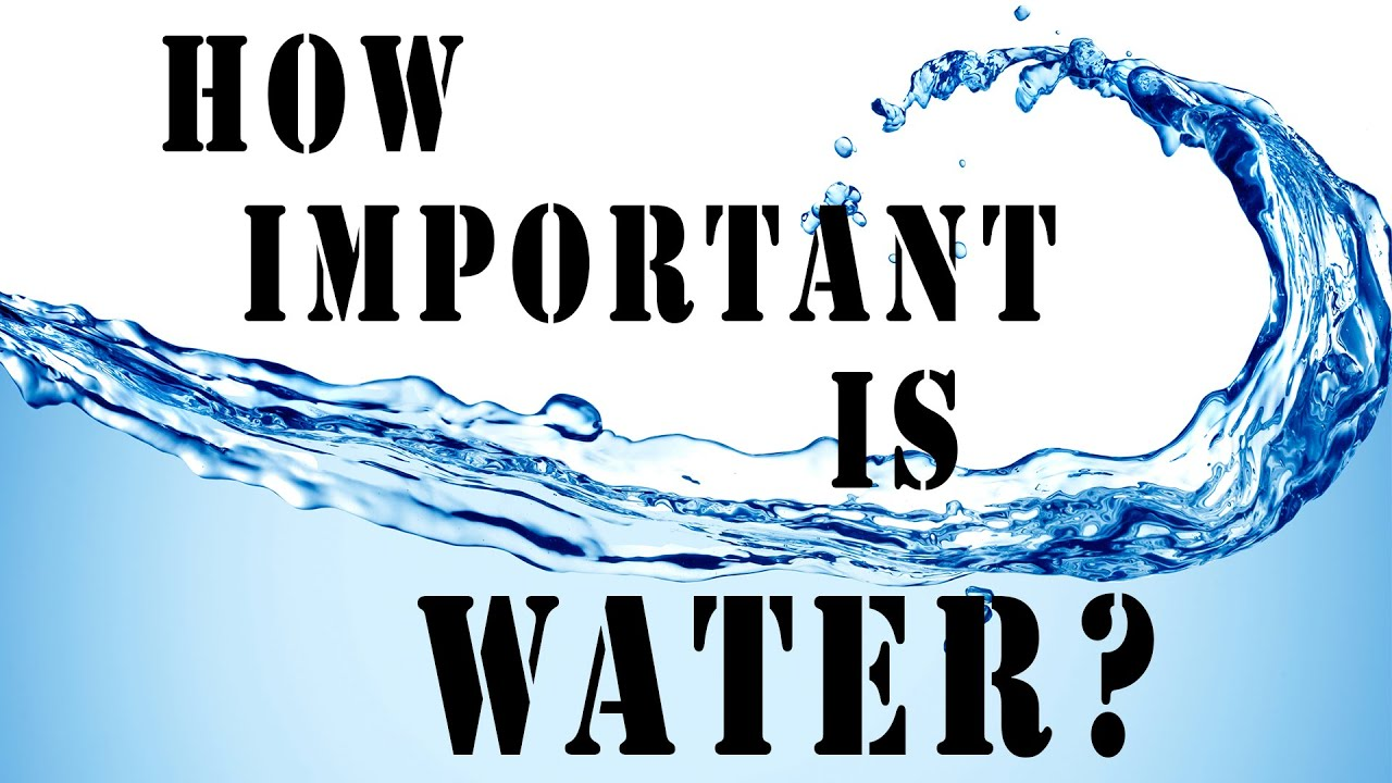 How water management is important in