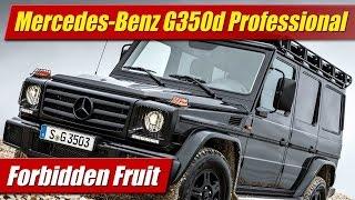 Forbidden Fruit: Mercedes-Benz G350d Professional