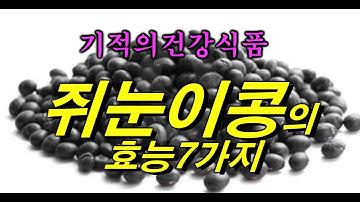 기적의 콩 ~ 쥐눈이콩을 아시나요?  약콩의 놀라운 효능7가지 ~!