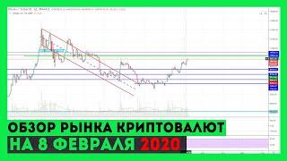 Обзор и прогноз рынка криптовалют на 8.02.2020