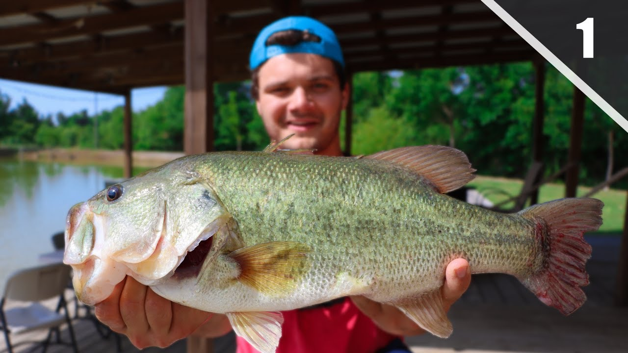 This Mini Farm Pond Is Full Of Giant Bass Perry Sallies Ep 1 Youtube