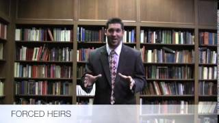 LSU Law Assault & Flattery 2014 - Forced Heir Attorney Commercial