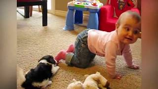 funny babies with animals 3
