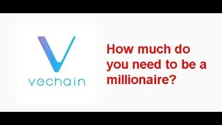VeChain Millionaire next bullrun? How much Vechain do you need?