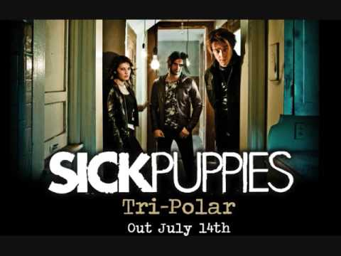 sick puppies you re going down song download