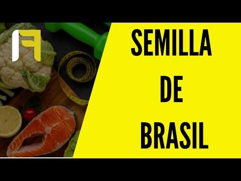 Bajar de peso con semilla de brasil