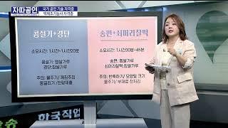 [자따공인 200501] 떡제조기능사 자격증 / 김은정…