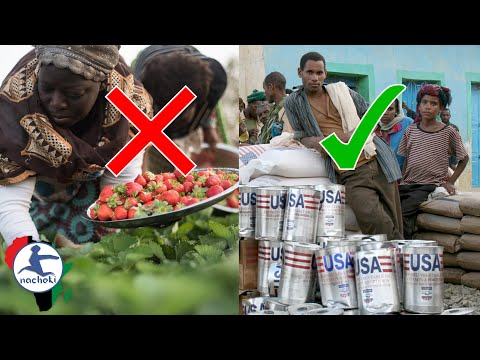How the West Manufactured Africa's Food Crisis on Purpose | 22 July 2021