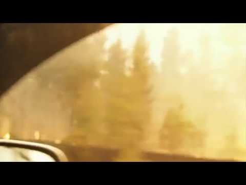 Locals Film Dramatic Escape as Fire Rages Along Roadside in British Columbia