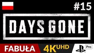 Days Gone PL  #15 (odc.15)  Klimatyczna piosenka | Gameplay po polsku 4K