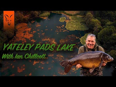 ***CARP FISHING TV*** Yateley Pads Lake