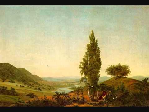 Beethoven - Symphony #6: 1. Allegro ma non troppo