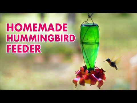 Make a HUMMINGBIRD FEEDER - YouTube