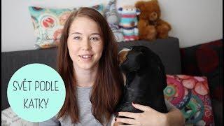 Správný čas na psa? | Aron