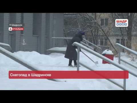 Снегопад в Шадринске