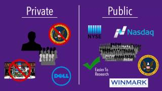 Determining If a Company Is Public or Private