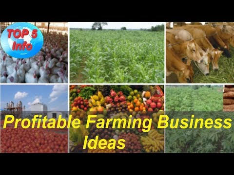 Top 5 Most Profitable Farming Business Ideas in 2017