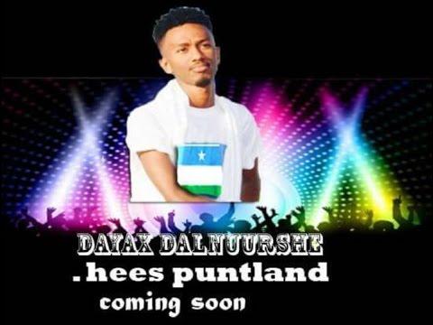 Dayax Dalnuurshe Hees cusub  (puntland) 2017