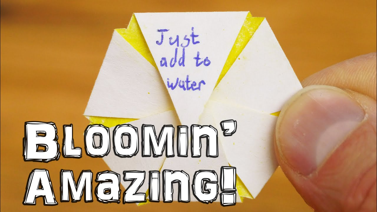 Just Add Water – Blooming Flower Trick