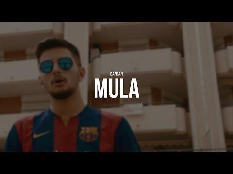 DARDAN - MULA (prod. LIA) (Official Video)