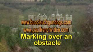 Complete Springer Spaniel Training Series - Film 1
