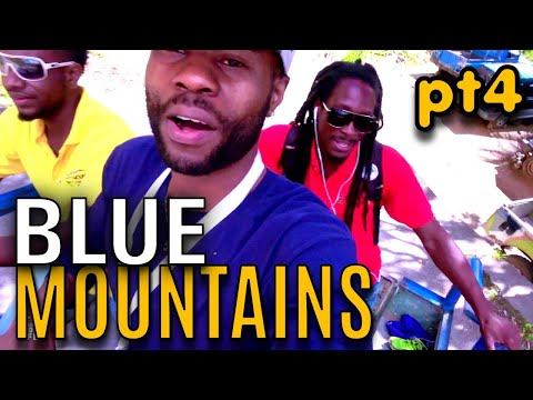 Kino In The Blue Mountains (Pt4) |   EP691 |  JAMAICA GOOD LIFE 🇯🇲