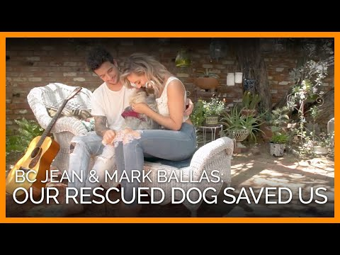 BC Jean and Mark Ballas' Love for Their Rescued Dog