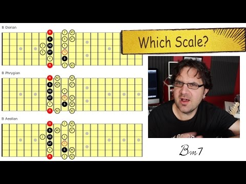 Which Scale?