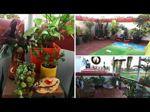 Terrace Garden Makeover||Terrace garden Tour||Balcony Organization Ideas||Backyard Gardening