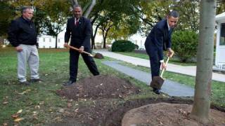 Commemorative Tree Planting at the White House