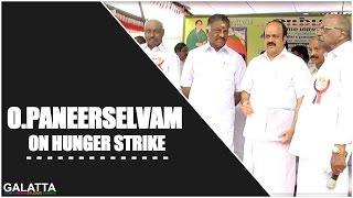 O.Paneerselvam on hunger strike