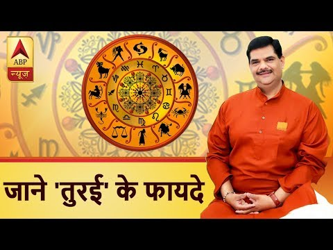Guruji With Pawan Sinha: Know the benefits of Ridged gourd or `Turai`