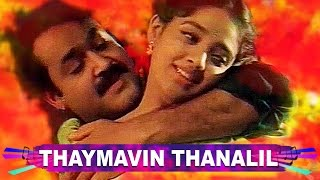 "Oru Yathramozhi Movie song | ""thaimavin thanalil...."""