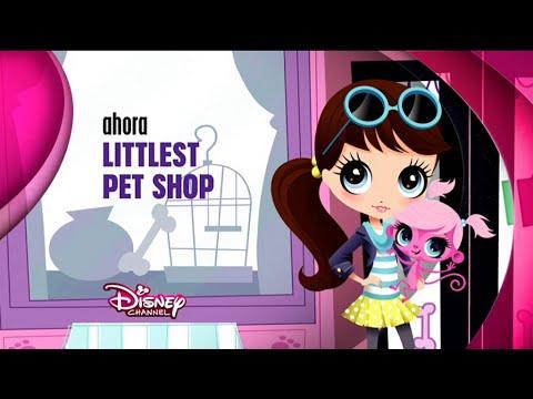 Pet Shop,pet shop near me,pet shop store