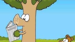 Ruthe.de - Biber und Baum
