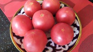 ПАТИР. Лепешки из помидорах. Мамин фирменный рецепт. Очень даже вкусно.
