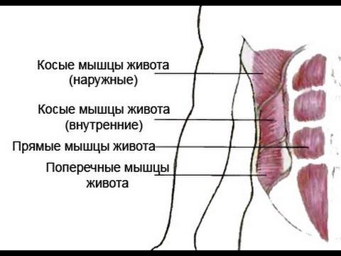 Хочешь здоровую спину? - Качай пресс! Михаил Шилов