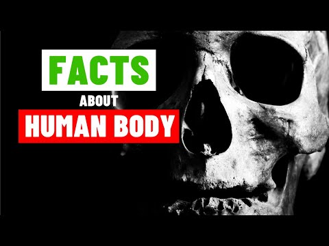 Crazy and Interesting Human Body Facts You Didn't Know. PART 4