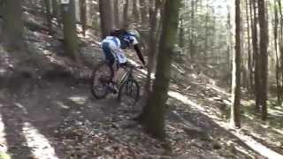 Mountainbike Singletrailparcours Hochspeyer - schwarze Strecke
