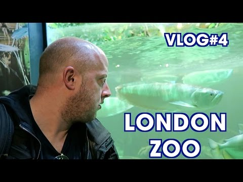 London Zoo (ZSL) - Vlog#4 - Seven Days in London