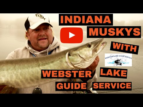 Indiana Muskys With Webster Lake Guide Service! FIGURE 8 STRIKES! (5 Fish Day!)